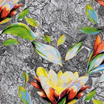 kwiat na skalnym tle 2